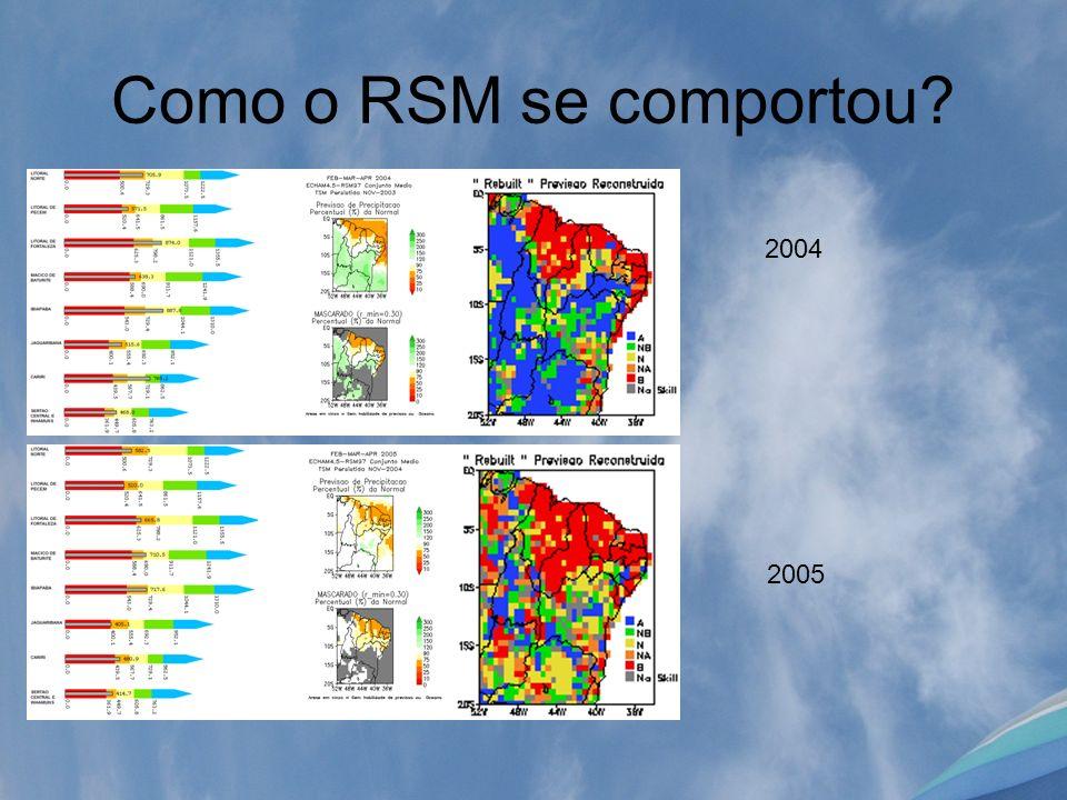 Como o RSM se comportou 2004 2005