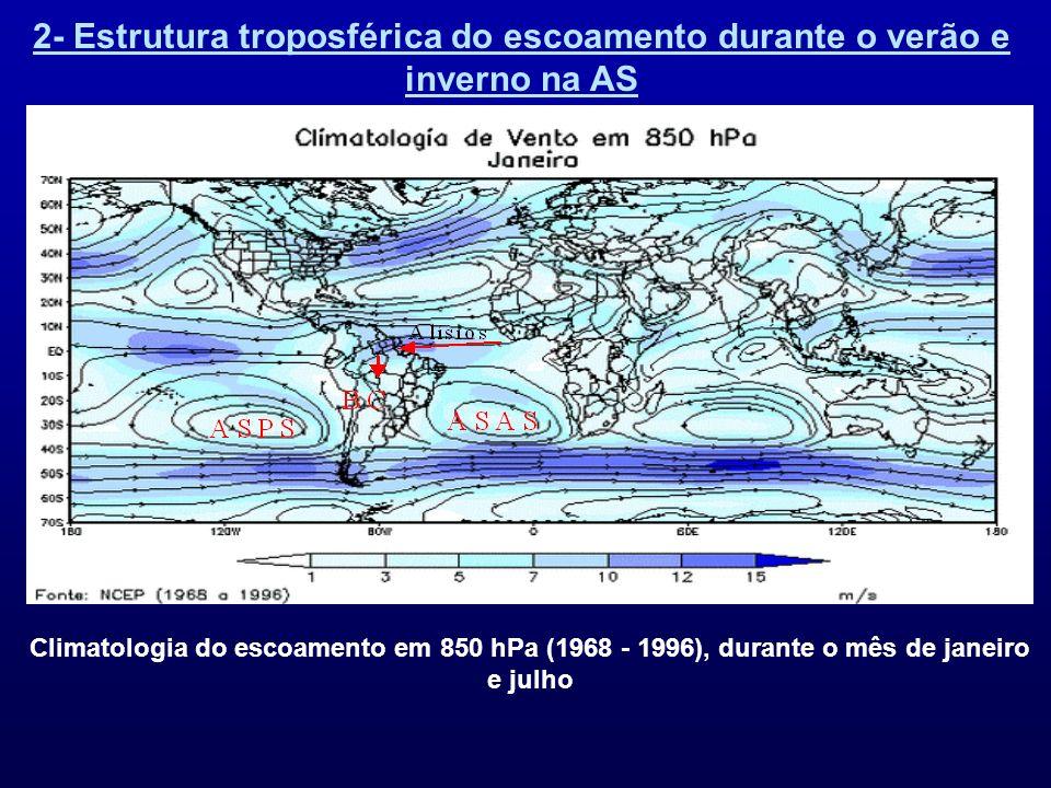 2- Estrutura troposférica do escoamento durante o verão e inverno na AS