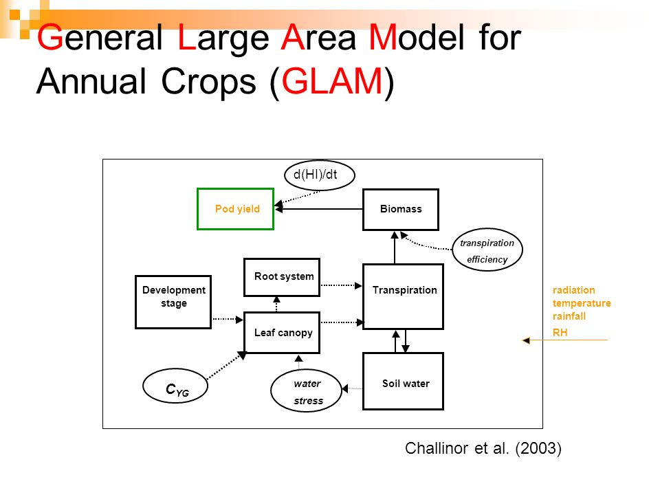 General Large Area Model for Annual Crops (GLAM)