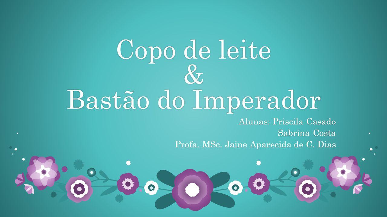 Copo de leite & Bastão do Imperador