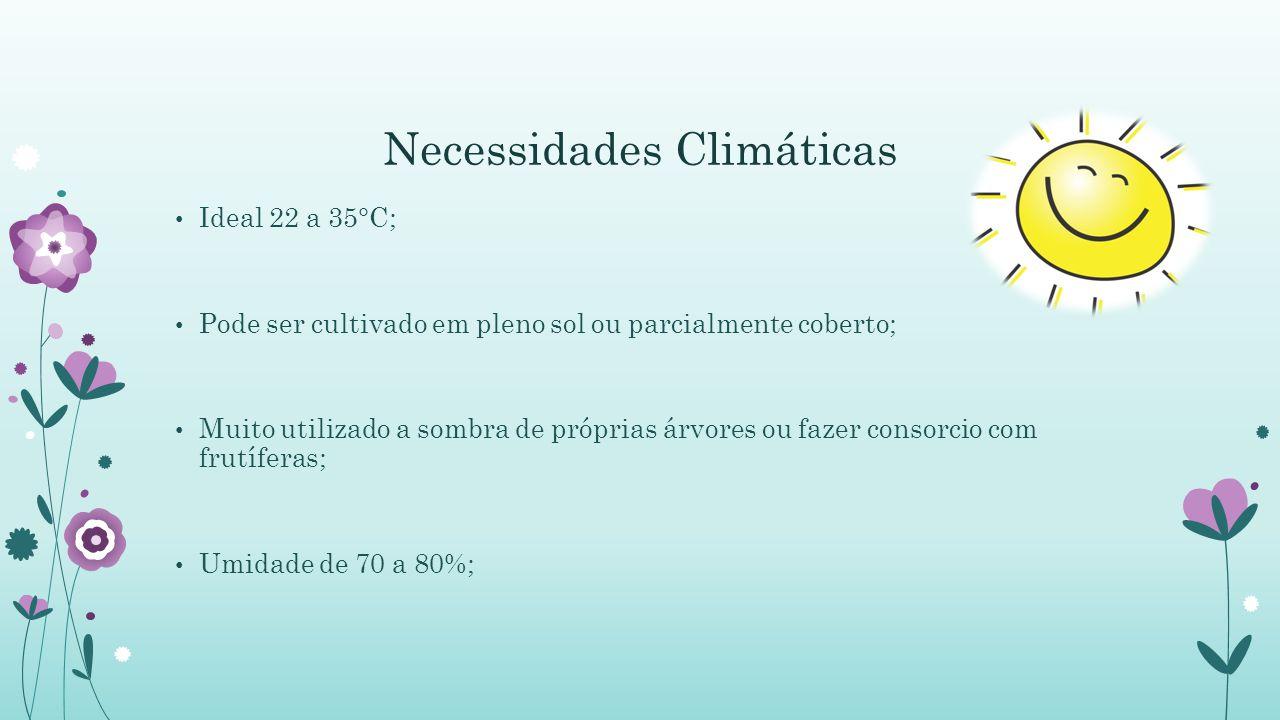 Necessidades Climáticas