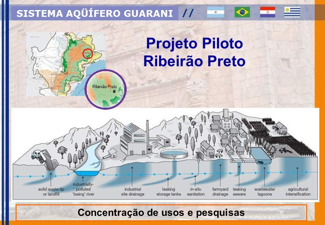 Projeto Piloto Ribeirão Preto