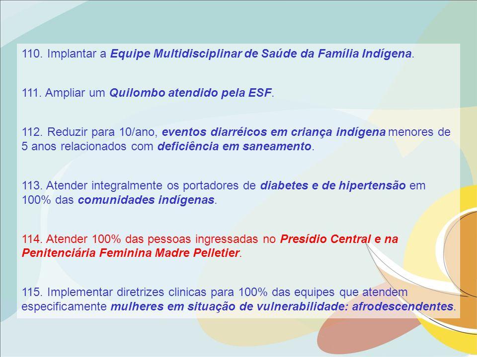 110. Implantar a Equipe Multidisciplinar de Saúde da Família Indígena.
