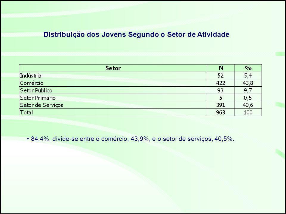 Distribuição dos Jovens Segundo o Setor de Atividade