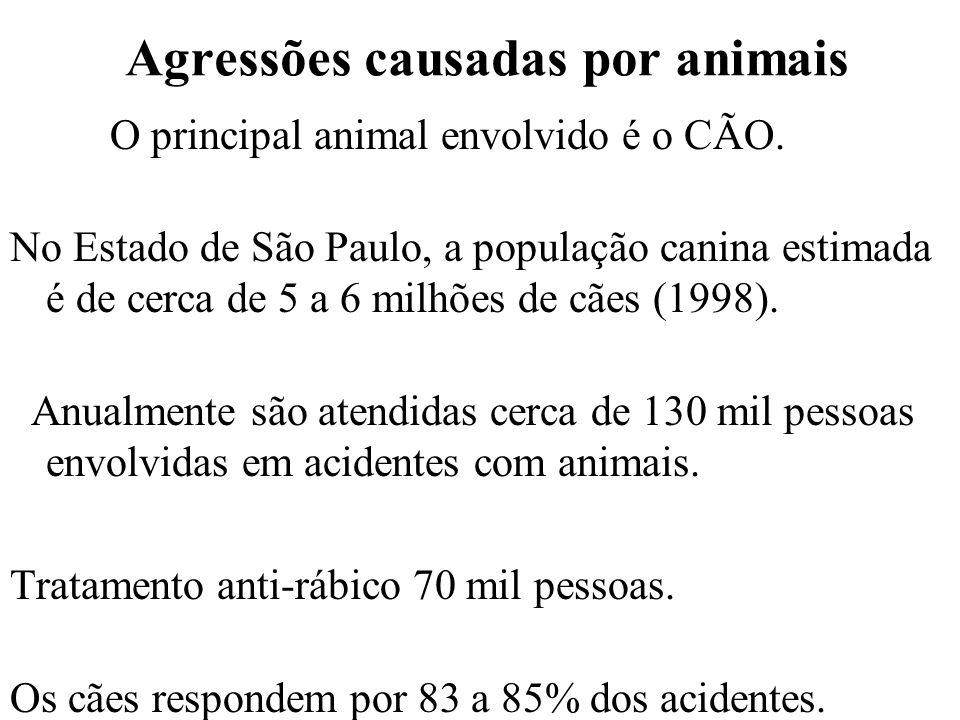 Agressões causadas por animais