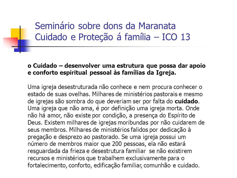 Seminário sobre dons da Maranata Cuidado e Proteção á família – ICO 13