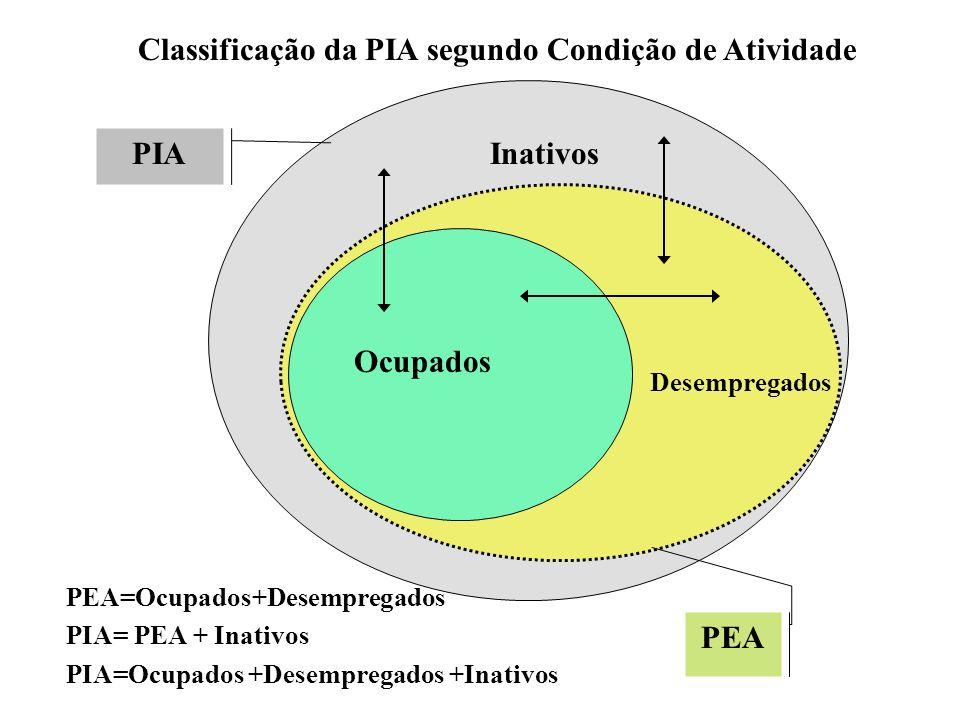 Classificação da PIA segundo Condição de Atividade