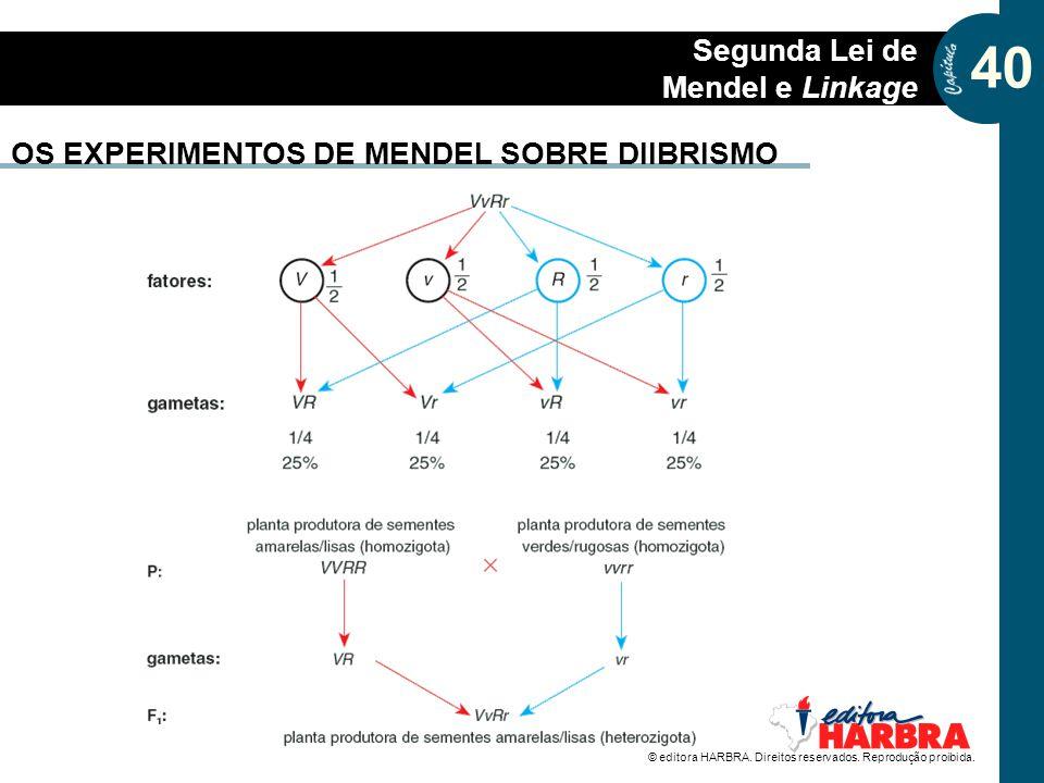 OS EXPERIMENTOS DE MENDEL SOBRE DIIBRISMO