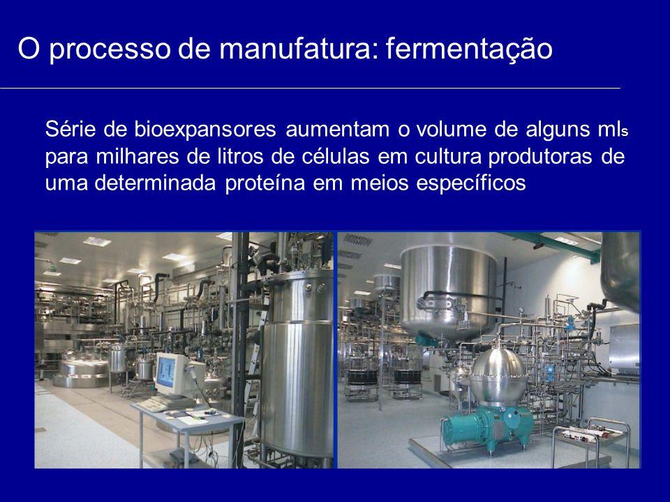 O processo de manufatura: fermentação