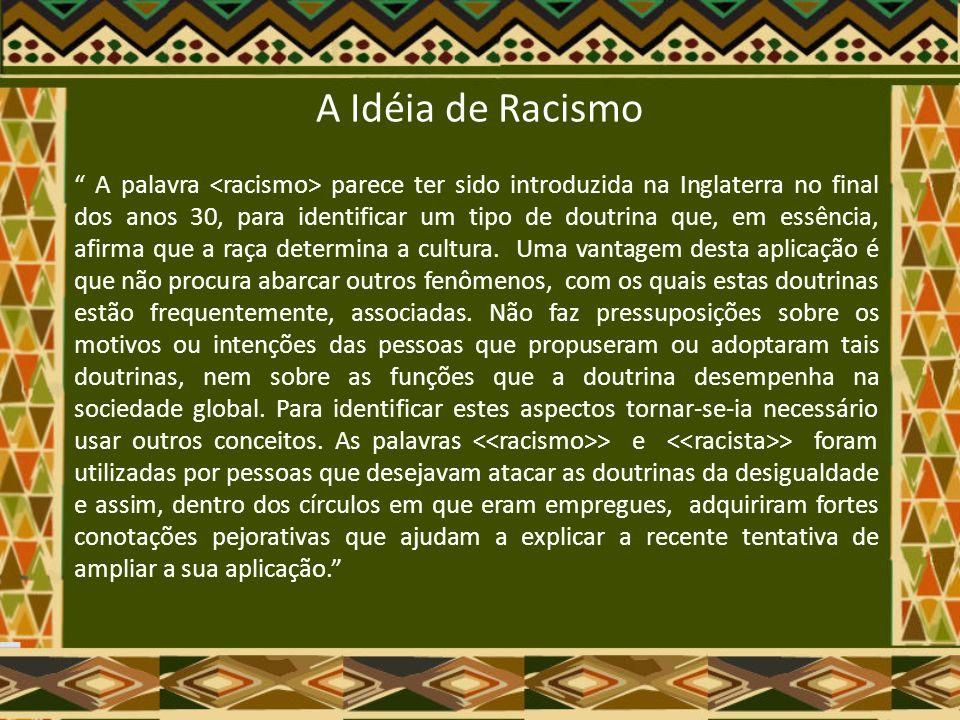 A Idéia de Racismo