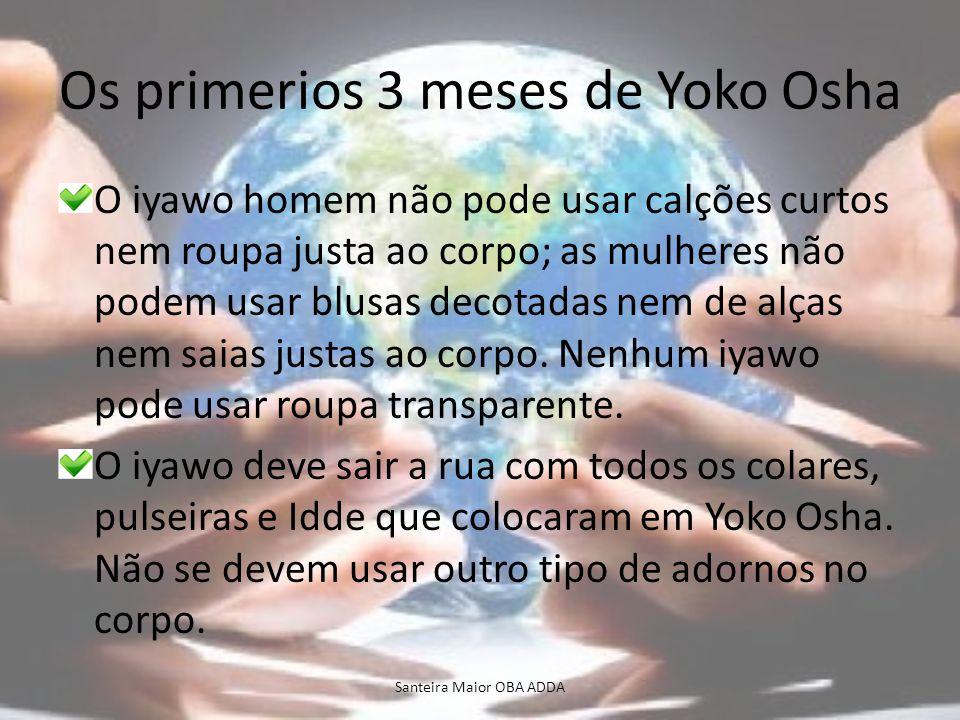 Os primerios 3 meses de Yoko Osha