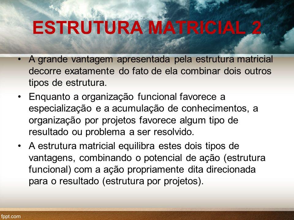 ESTRUTURA MATRICIAL 2