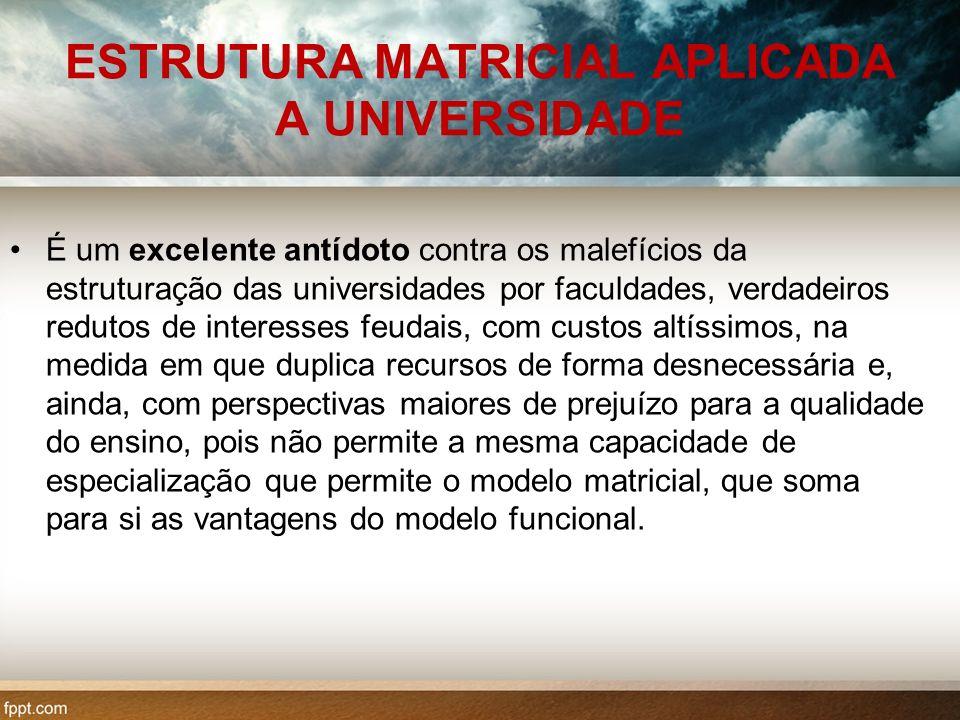 ESTRUTURA MATRICIAL APLICADA A UNIVERSIDADE