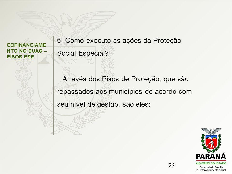 6- Como executo as ações da Proteção Social Especial