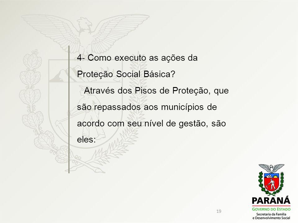 4- Como executo as ações da Proteção Social Básica