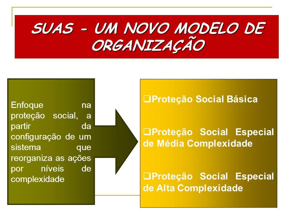 SUAS - UM NOVO MODELO DE ORGANIZAÇÃO