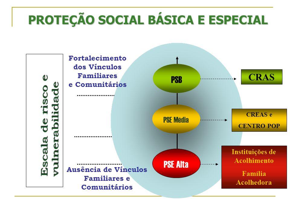 PROTEÇÃO SOCIAL BÁSICA E ESPECIAL