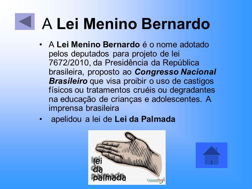 A Lei Menino Bernardo