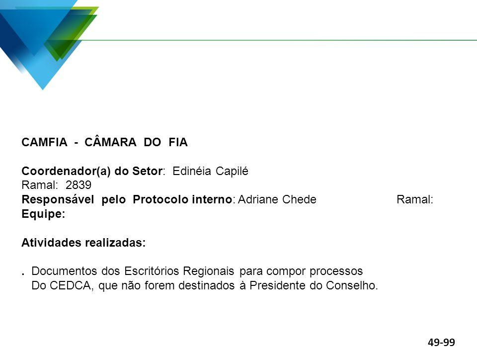 CAMFIA - CÂMARA DO FIA Coordenador(a) do Setor: Edinéia Capilé Ramal: 2839.
