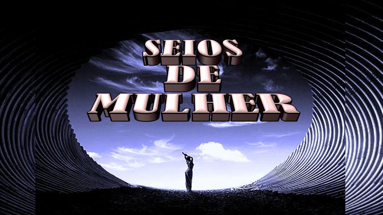 SEIOS DE MULHER