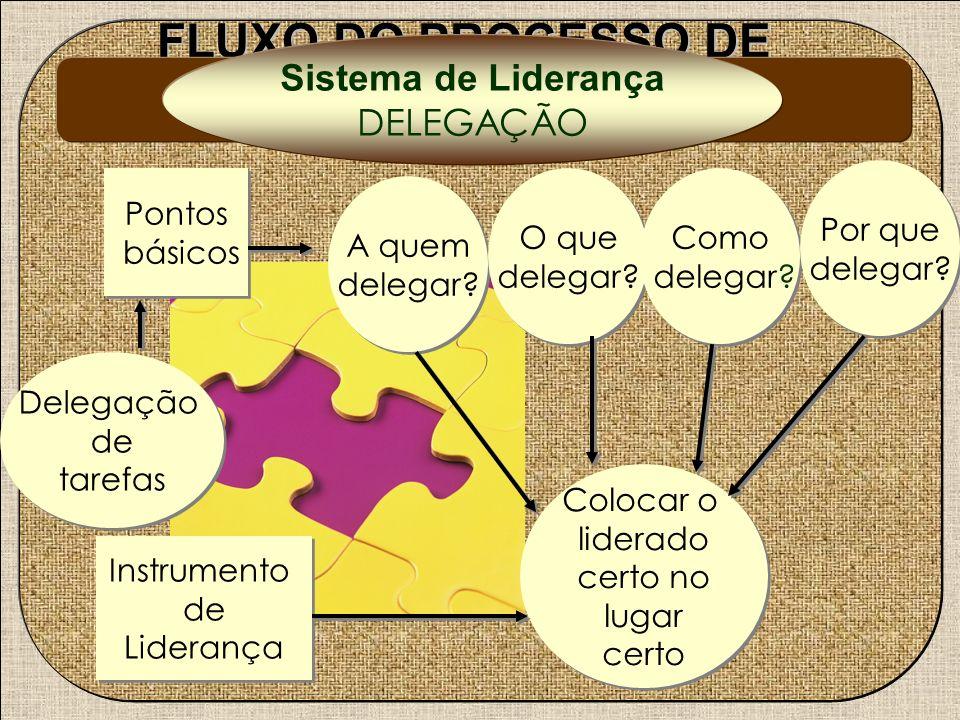 FLUXO DO PROCESSO DE LIDERANÇA