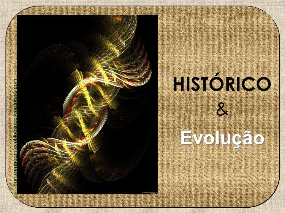 HISTÓRICO & Evolução Fonte imagem:ecoblogando.wordpress.com