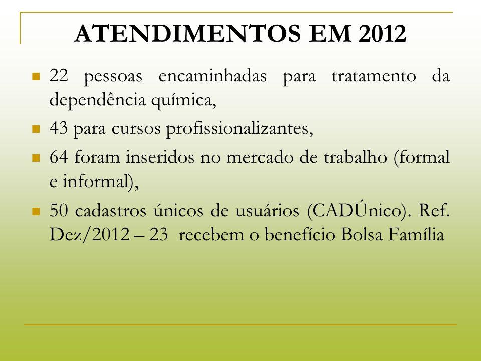 Atendimentos em 2012 22 pessoas encaminhadas para tratamento da dependência química, 43 para cursos profissionalizantes,