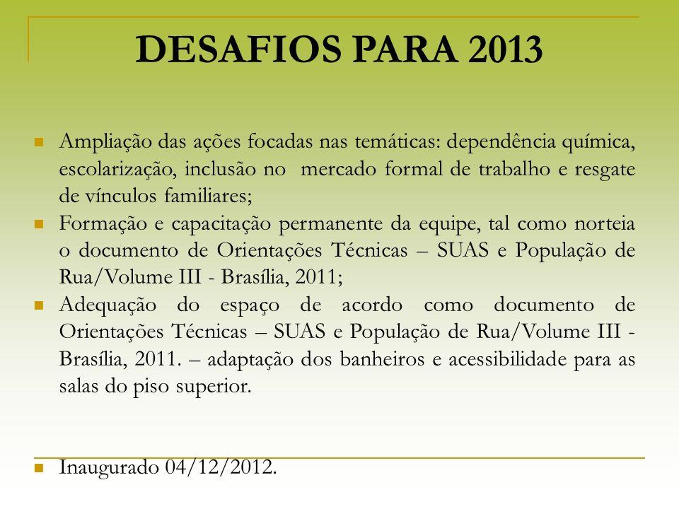 DESAFIOS PARA 2013