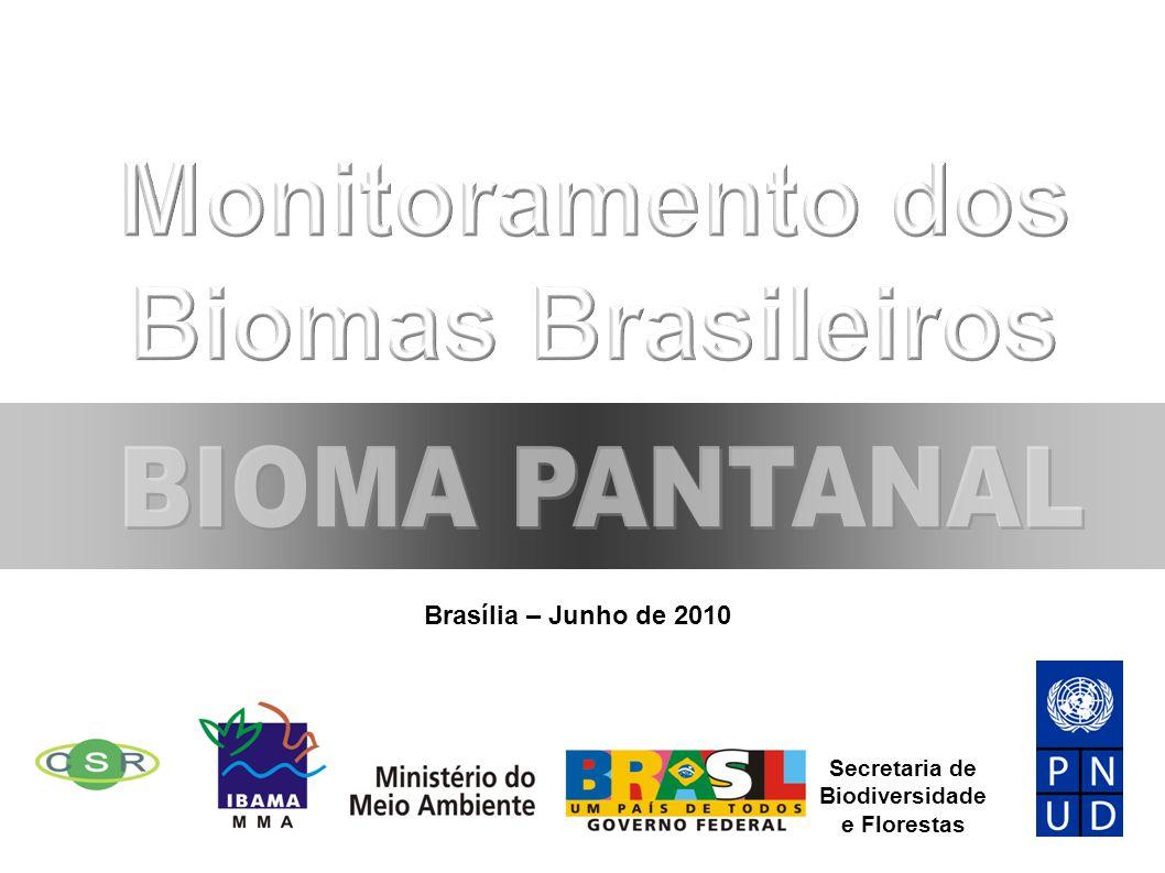 Monitoramento dos Biomas Brasileiros
