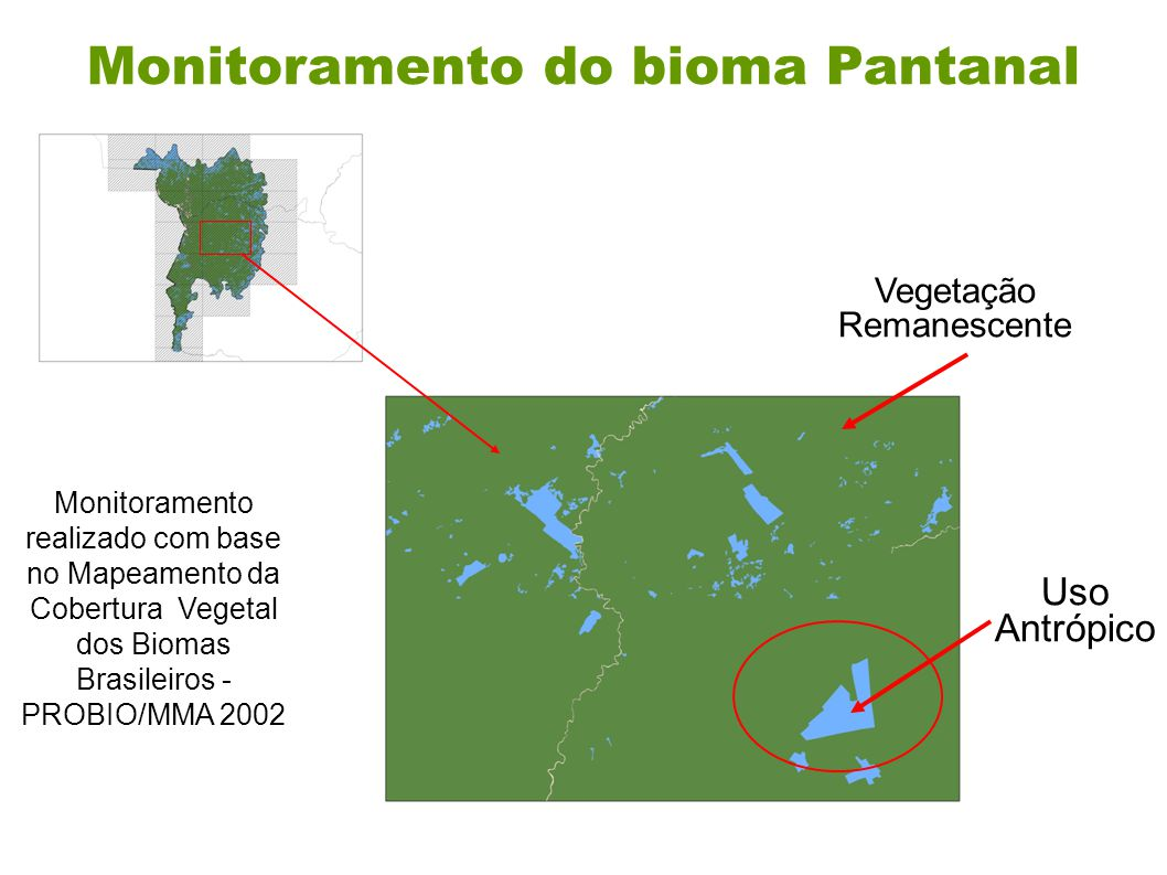 Monitoramento do bioma Pantanal