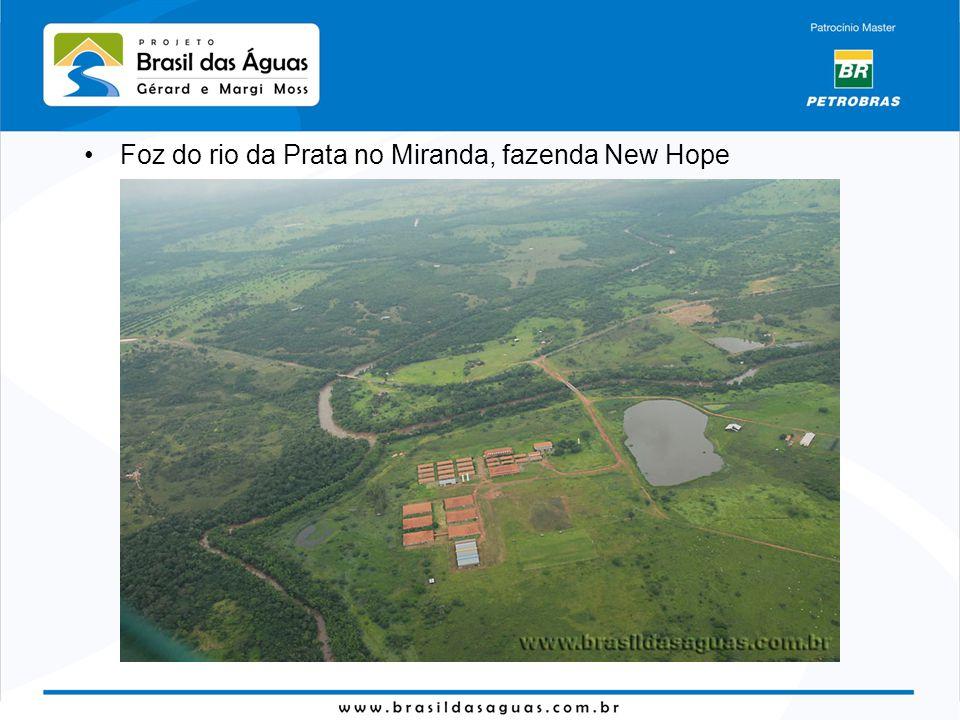 Foz do rio da Prata no Miranda, fazenda New Hope