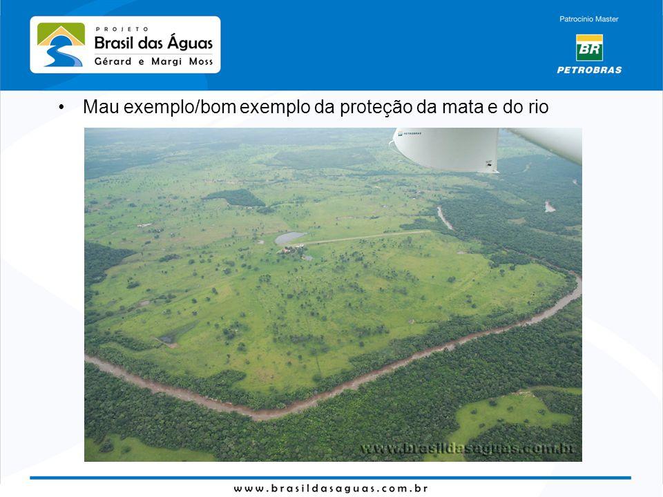 Mau exemplo/bom exemplo da proteção da mata e do rio