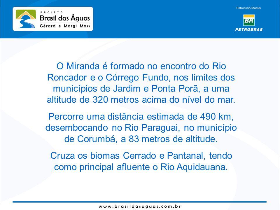 O Miranda é formado no encontro do Rio Roncador e o Córrego Fundo, nos limites dos municípios de Jardim e Ponta Porã, a uma altitude de 320 metros acima do nível do mar.