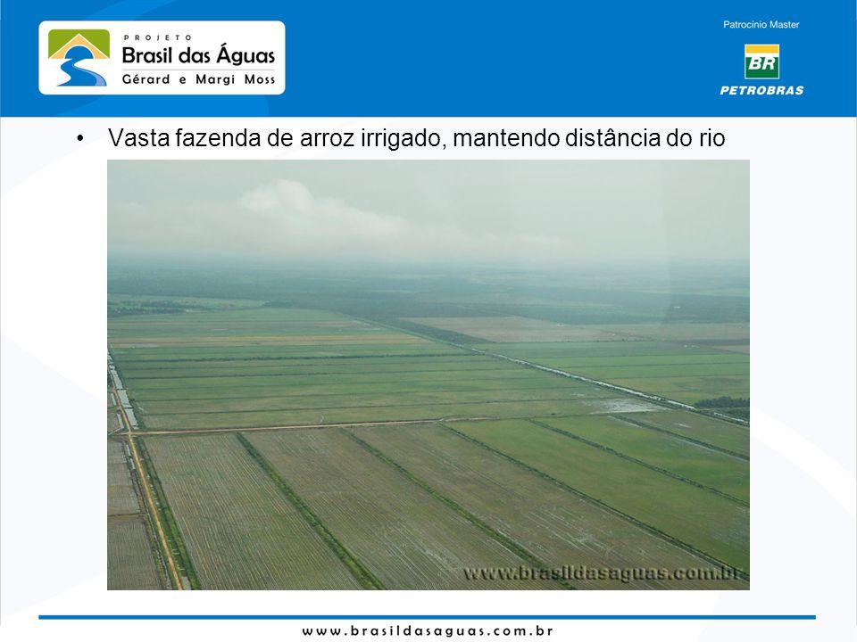 Vasta fazenda de arroz irrigado, mantendo distância do rio