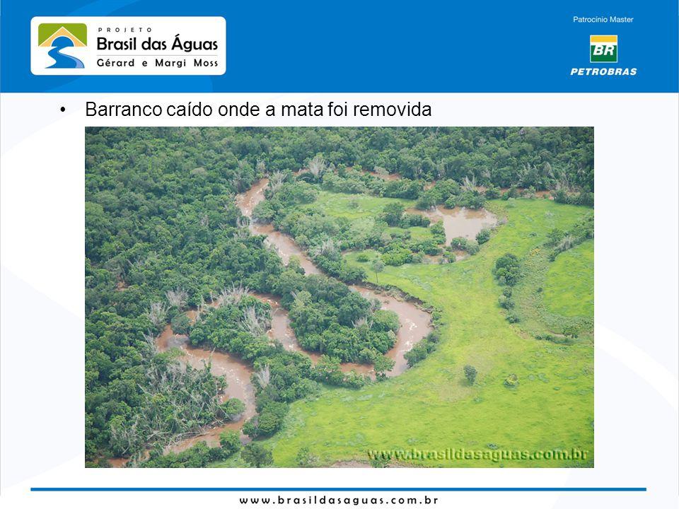 Barranco caído onde a mata foi removida