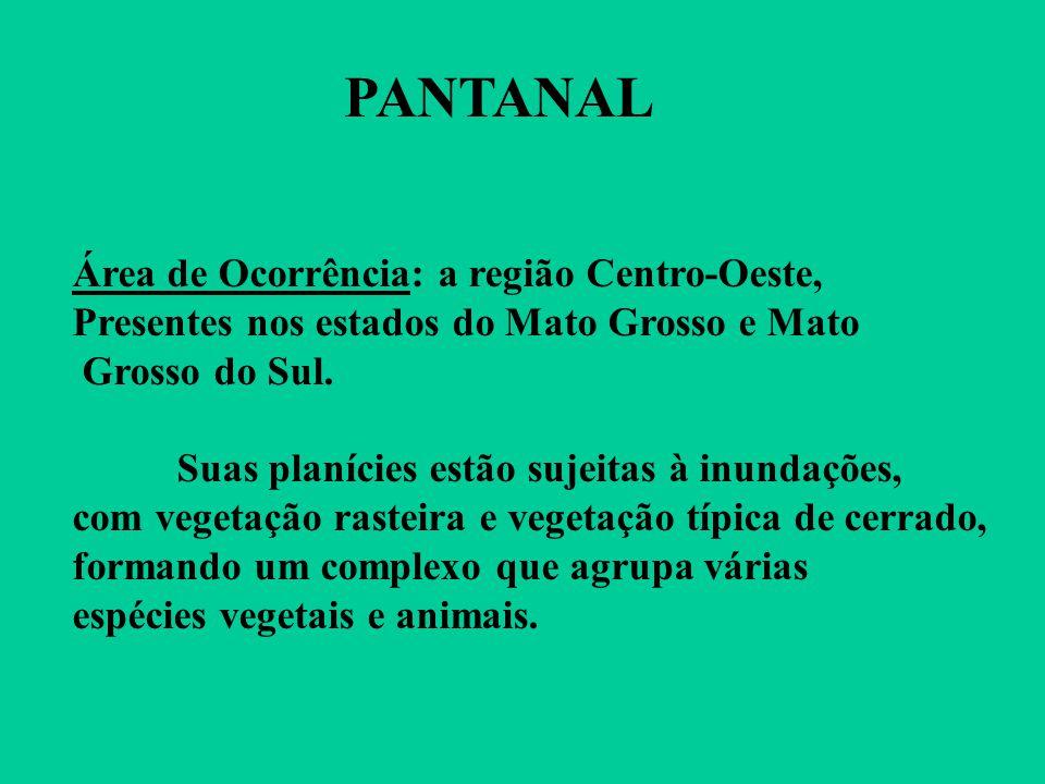 PANTANAL Área de Ocorrência: a região Centro-Oeste,