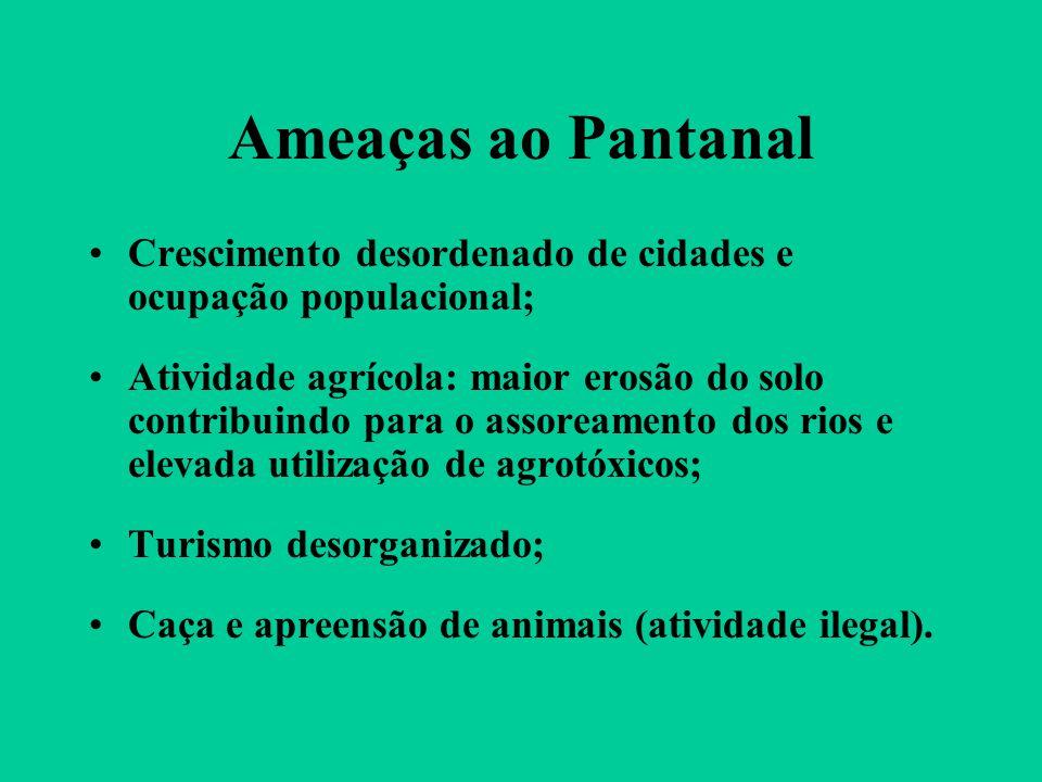 Ameaças ao Pantanal Crescimento desordenado de cidades e ocupação populacional;