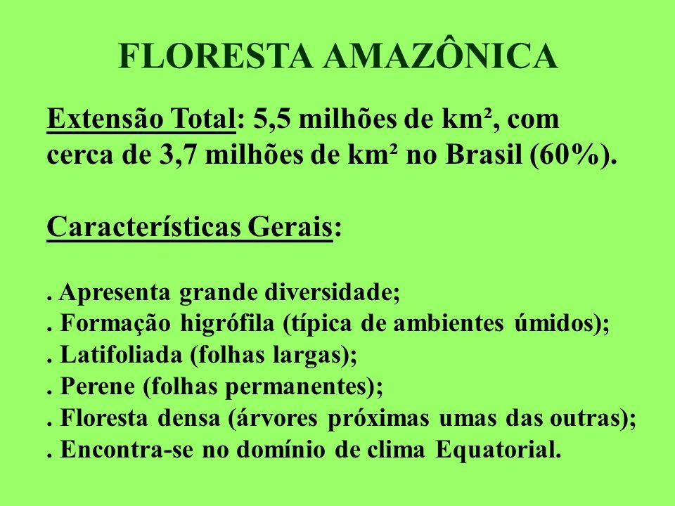 FLORESTA AMAZÔNICA Extensão Total: 5,5 milhões de km², com