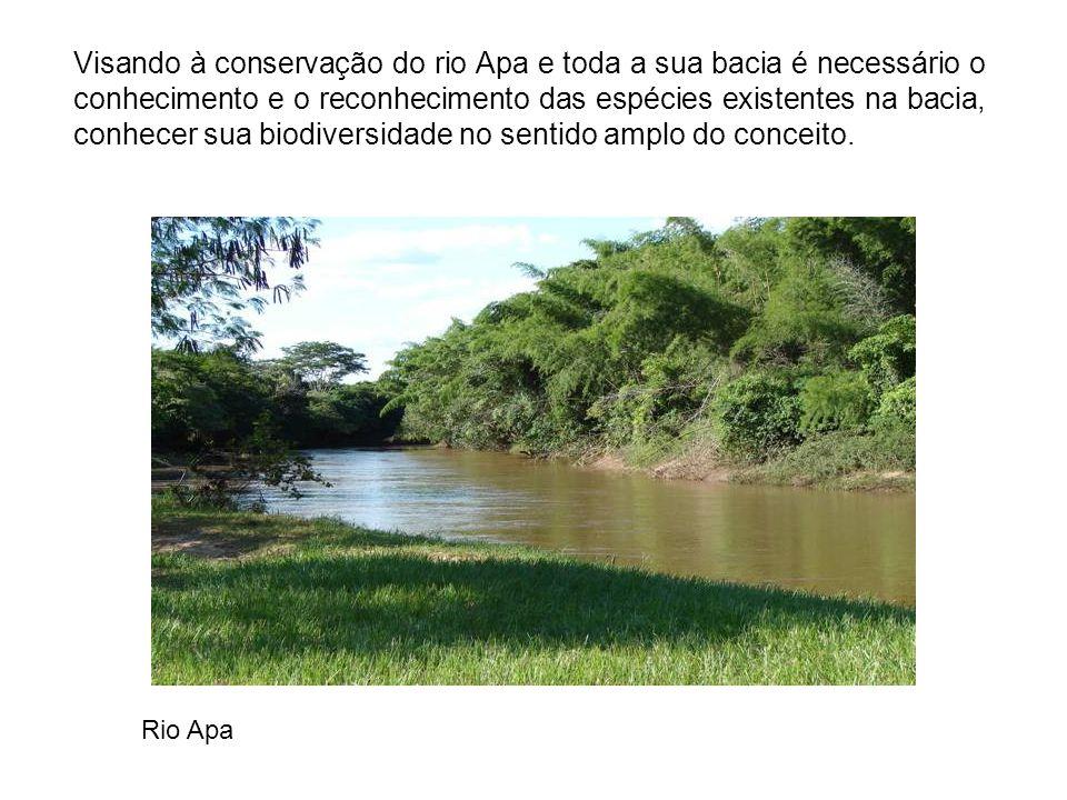 Visando à conservação do rio Apa e toda a sua bacia é necessário o conhecimento e o reconhecimento das espécies existentes na bacia, conhecer sua biodiversidade no sentido amplo do conceito.
