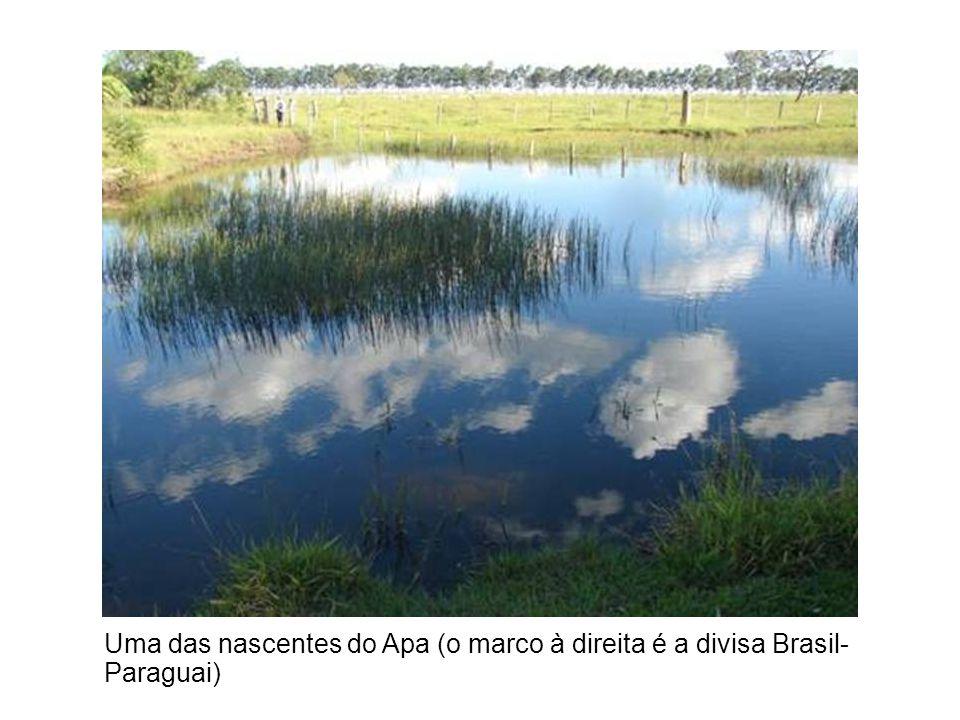 Uma das nascentes do Apa (o marco à direita é a divisa Brasil-Paraguai)