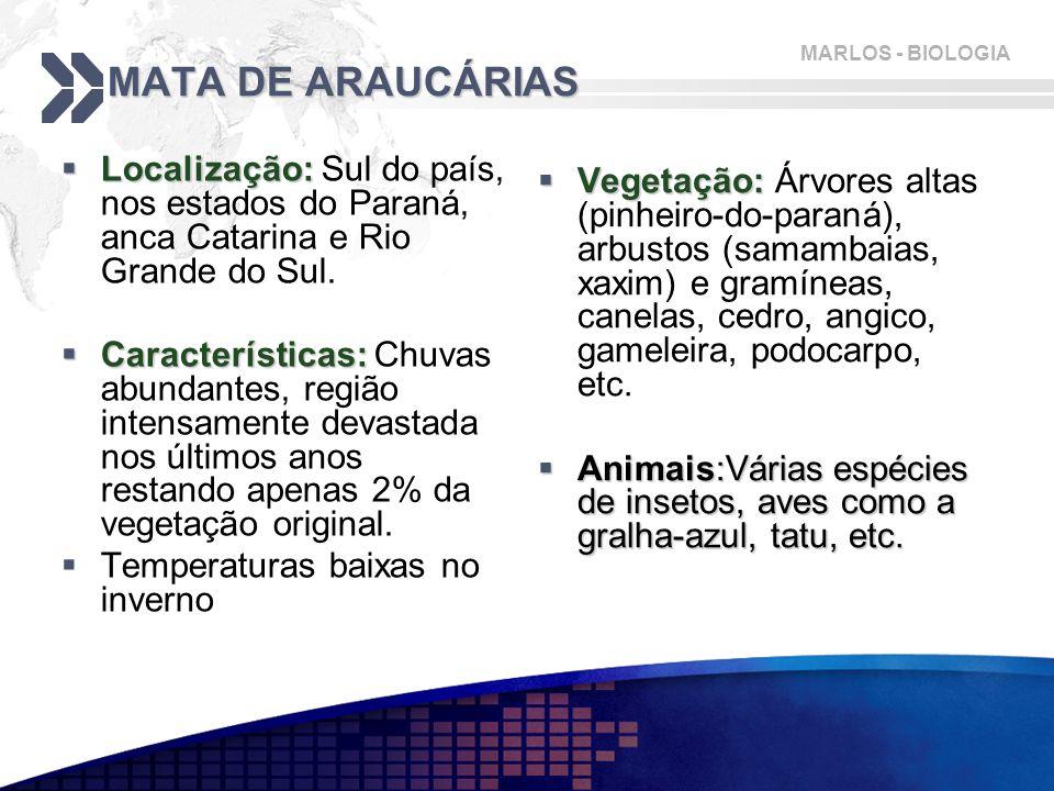 MATA DE ARAUCÁRIAS Localização: Sul do país, nos estados do Paraná, anca Catarina e Rio Grande do Sul.