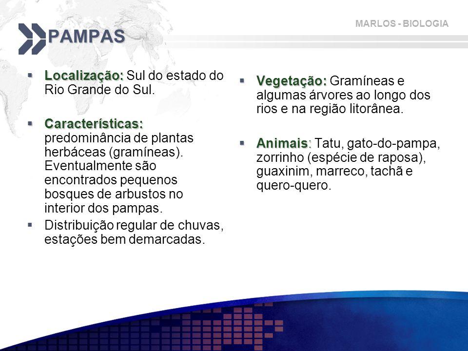 PAMPAS Localização: Sul do estado do Rio Grande do Sul.