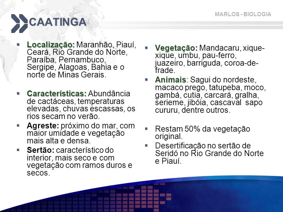 CAATINGA Localização: Maranhão, Piauí, Ceará, Rio Grande do Norte, Paraíba, Pernambuco, Sergipe, Alagoas, Bahia e o norte de Minas Gerais.