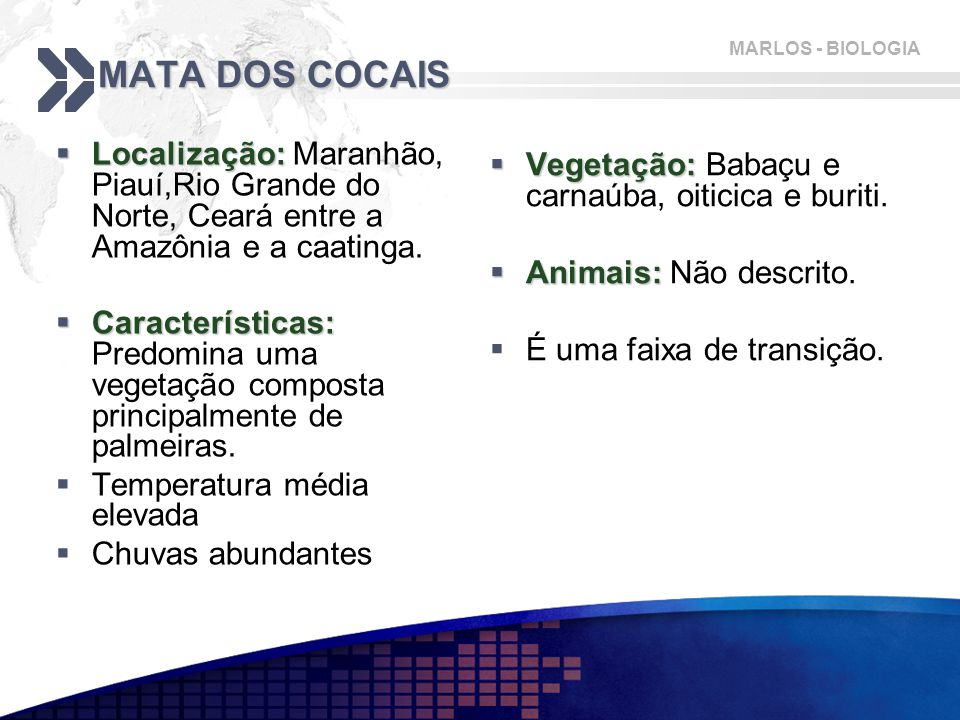 MATA DOS COCAIS Localização: Maranhão, Piauí,Rio Grande do Norte, Ceará entre a Amazônia e a caatinga.