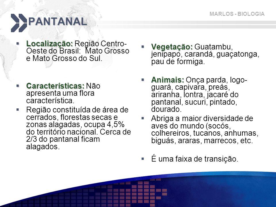 PANTANAL Localização: Região Centro-Oeste do Brasil: Mato Grosso e Mato Grosso do Sul. Características: Não apresenta uma flora característica.