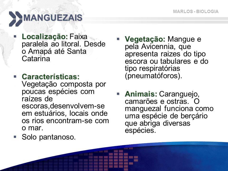 MANGUEZAIS Localização: Faixa paralela ao litoral. Desde o Amapá até Santa Catarina.