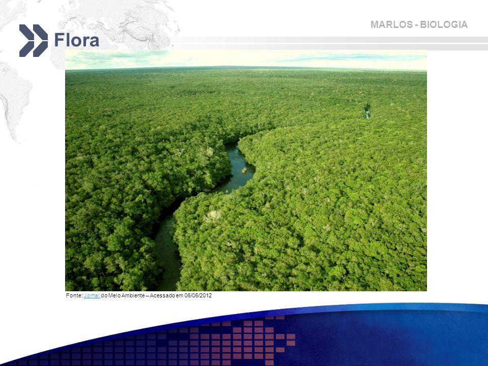 Flora Fonte: Jornal do Meio Ambiente – Acessado em 06/06/2012