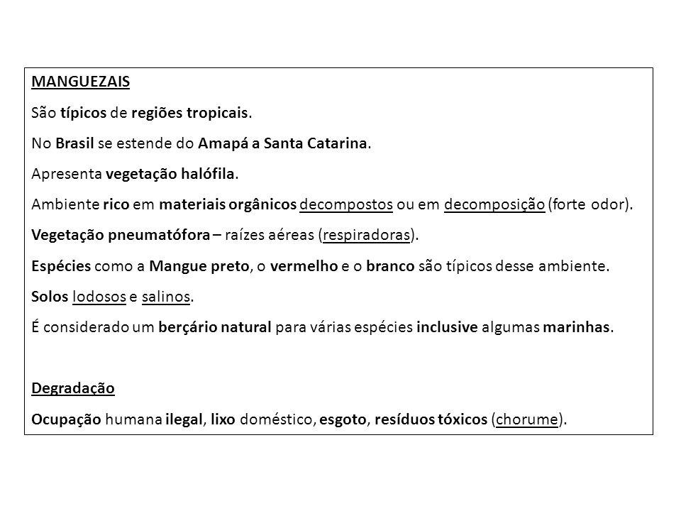 MANGUEZAIS São típicos de regiões tropicais. No Brasil se estende do Amapá a Santa Catarina. Apresenta vegetação halófila.