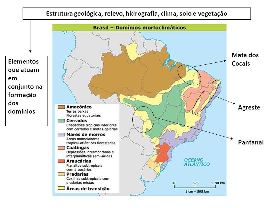 Estrutura geológica, relevo, hidrografia, clima, solo e vegetação