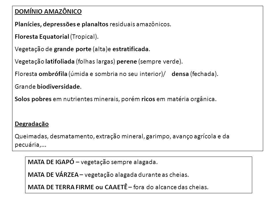 DOMÍNIO AMAZÔNICO Planícies, depressões e planaltos residuais amazônicos. Floresta Equatorial (Tropical).